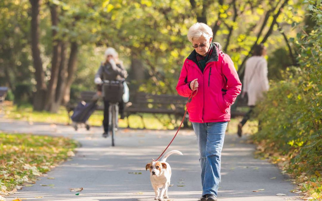 The Many Benefits of Owning a Pet for Seniors